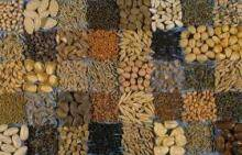Sell Offer Flax Seeds, Cumin Seeds, Cotton Seeds 50% Discount
