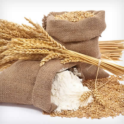 WHEAT FLOUR -  UP to 100,000 Mt per Month