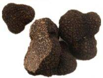 supply Chinese fresh mushroom truffle morel