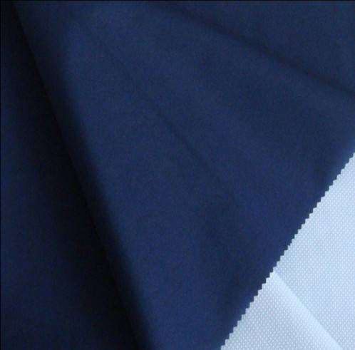 Polyester Pongee Fabric(190t, 210t, 240t, 260t, 290t, 300t, 320t)