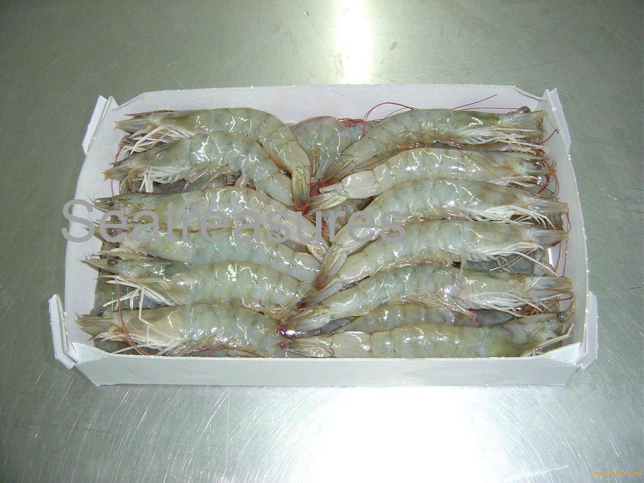 Sell Vannamei Shrimp