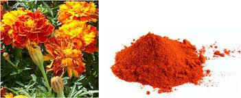 Natural Herb Extract Lutein Ester