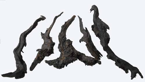 Chinese driftwood