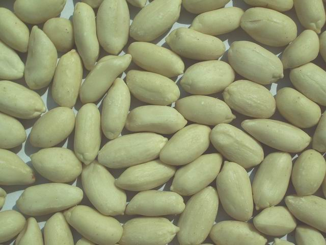 Raw Peanuts in Shell 9-11,11-13, blanched Peanuts/Groundnuts Kernel for sale