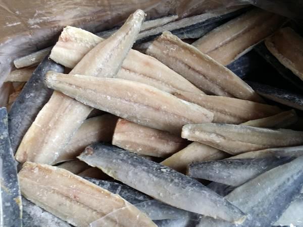 frozen spanish mackerel fish fillet