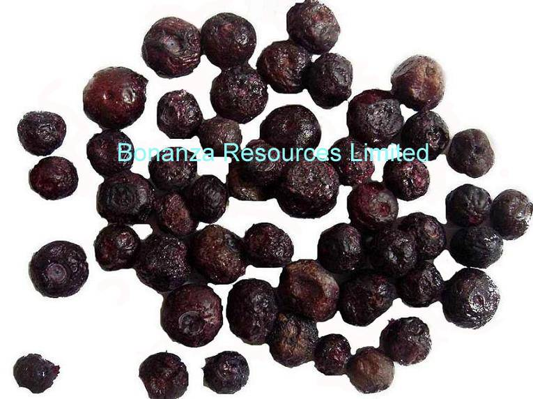 Sell Freeze Dried Blueberry