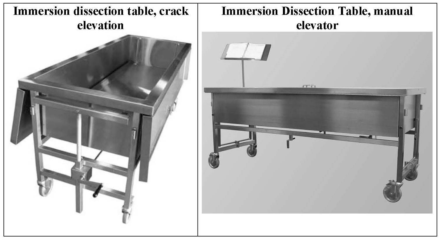 Immersion dissection table