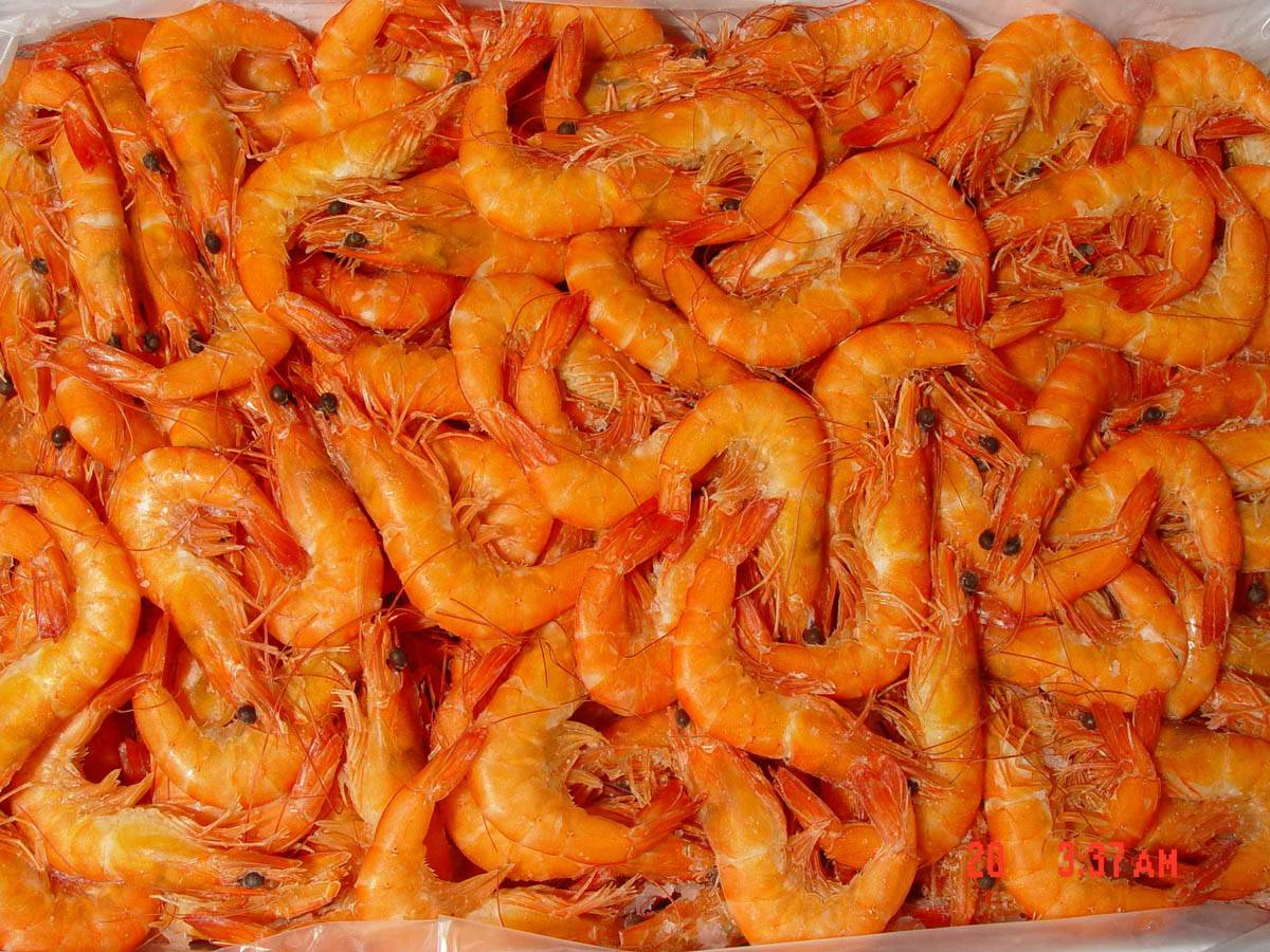 We can supply shrimp Vannamei