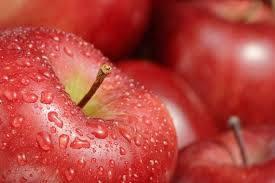 Sell Fresh Fruits Ranging from apples, oranges, lemons, bananas, avocadoes, pineapples etc