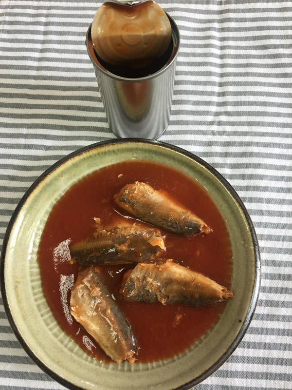 155g canned mackerel in tomato sauce in stock with good price