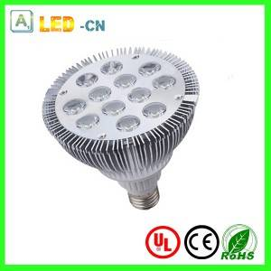 12W LED PAR38 spotlight