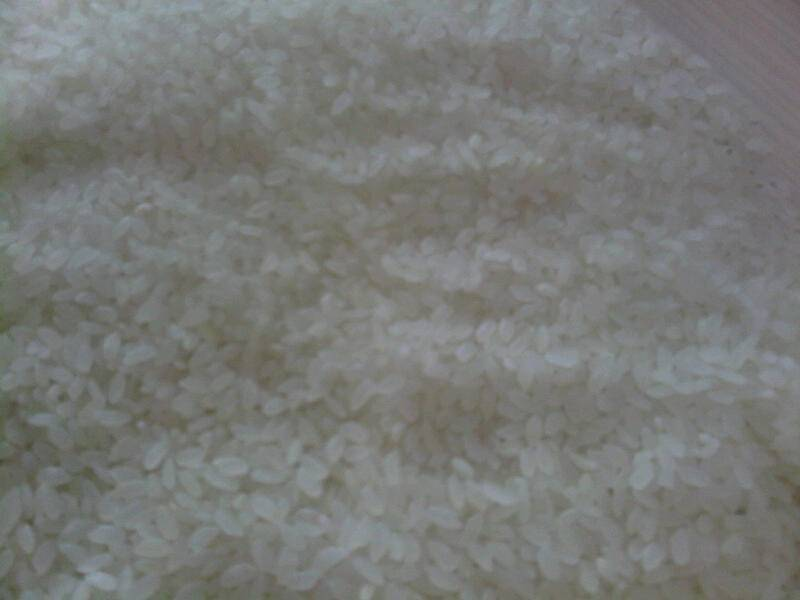 white/milled rice