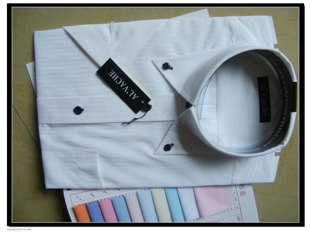 fashion blouse / shirt