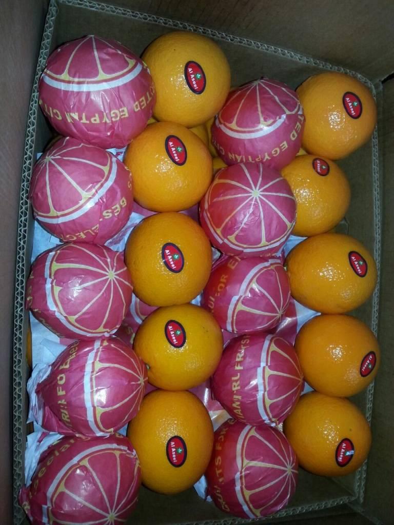 Oranges Type