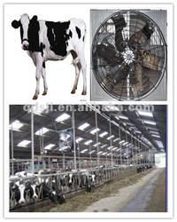 cow fan