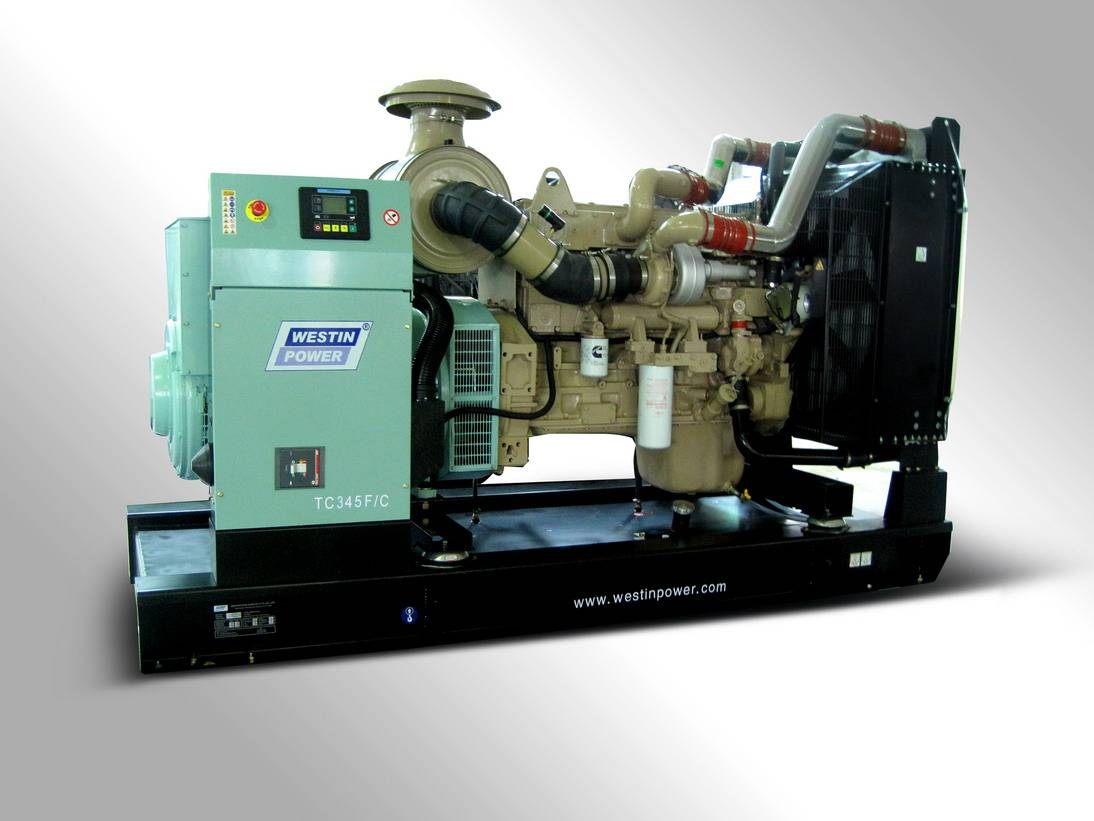Diesel generator set(TC345)