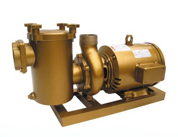 Pool Copper Pump