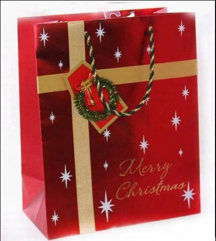Paper Bag, Gift Bag, Garment Bag