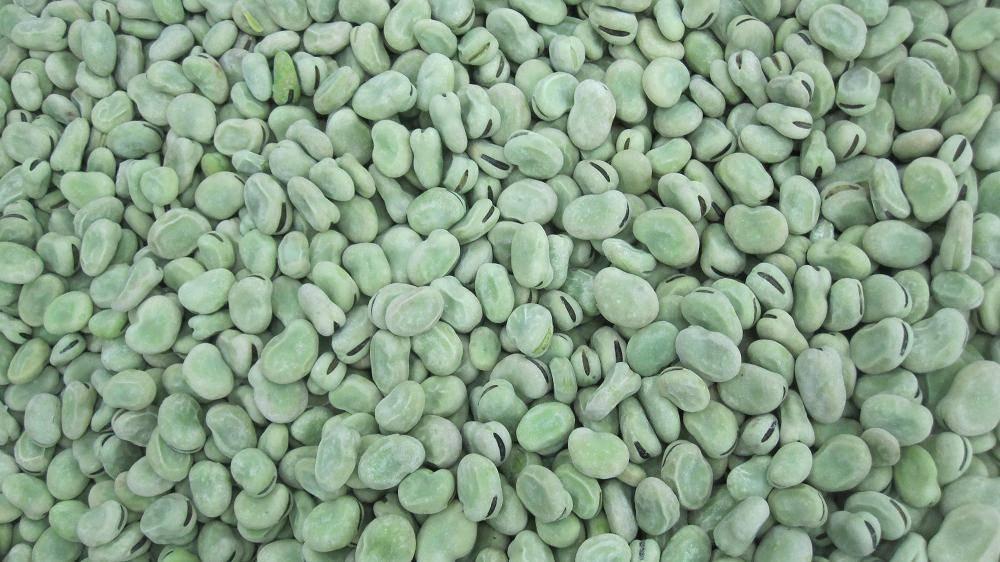 Frozen fava bean