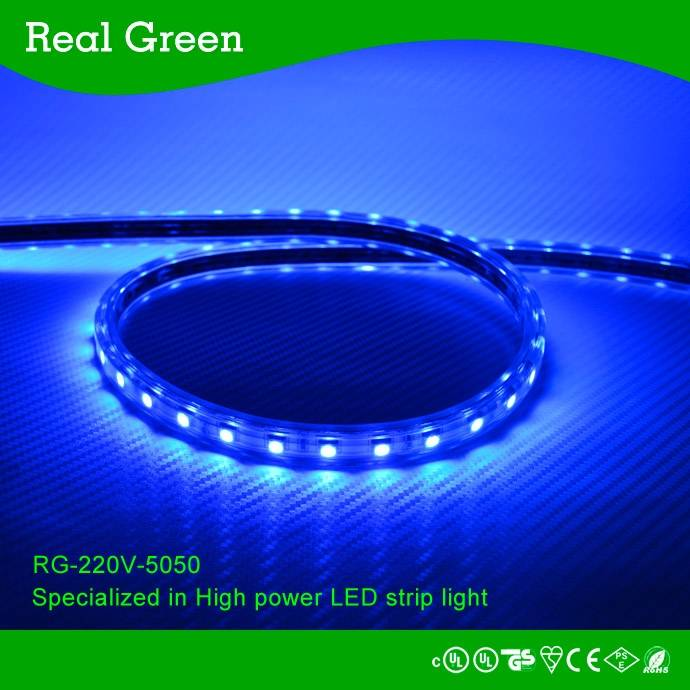 220V SMD5050 Blue LED strip light