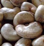 WE SELL RAW CASHEW NUT UN SHELL
