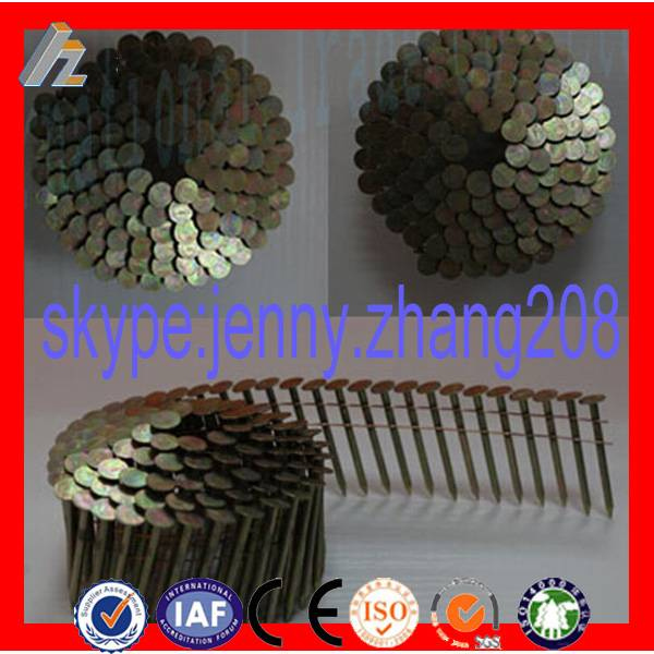 Common wire nail, common nail, common iron nails China supplier