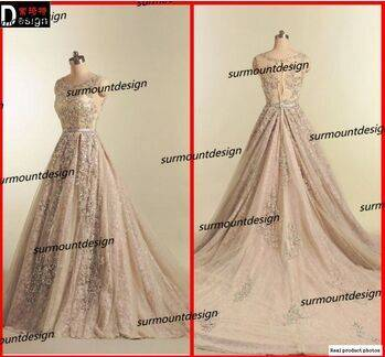 Elie Saab Real Pictures Beautiful Soft Tulle Beaded Long Lace Evening Dress 2015