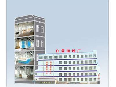 200T Building structure Wheat Flour Processing Machinery