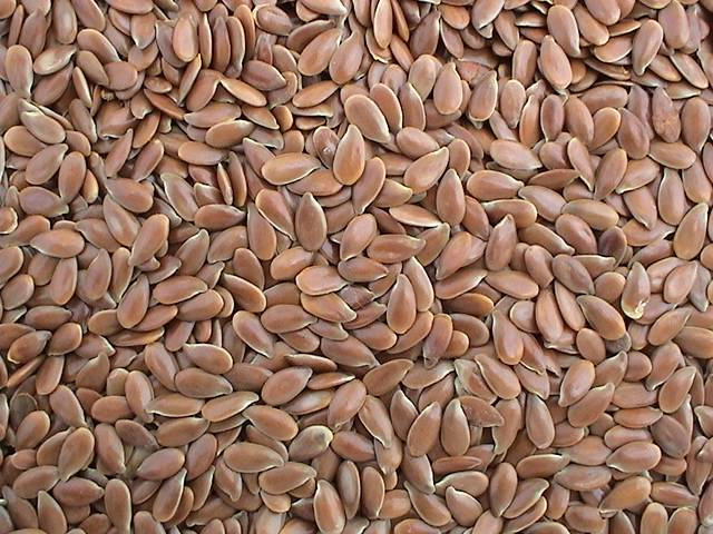 Chinese Flax Seeds