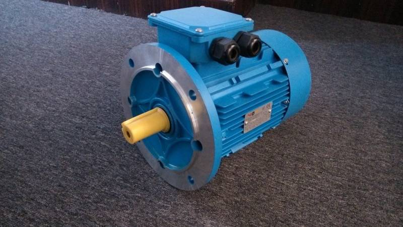 ANP Series Three Phase Induction motor(Gost Standard)