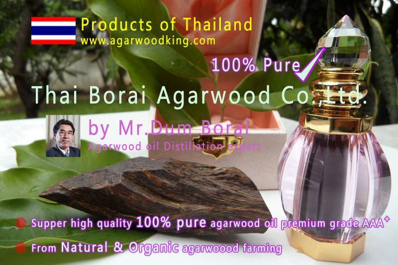agarwood oil,oud oil