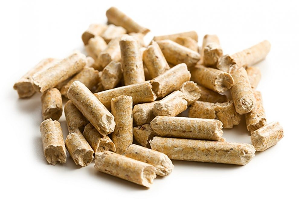 Wood Pellets for power plants