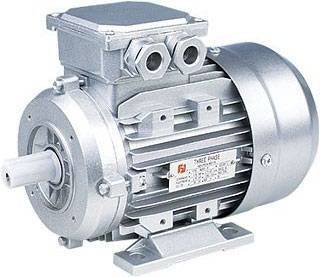 Induction motor(MS al body three phase ac motor)