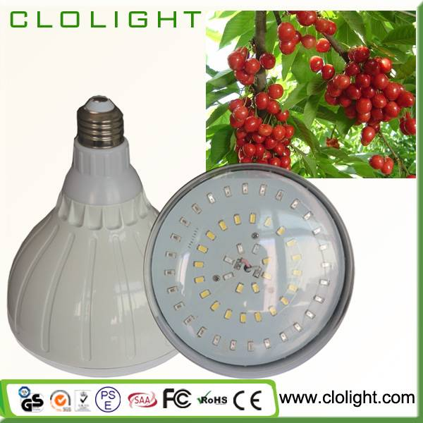 LED light source 25W led plant grow light indoor plant growth lamp hydroponics system
