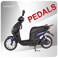 Europe 250W electric scooter with pedals ---LS1-4