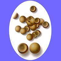 Sell artemia cysts