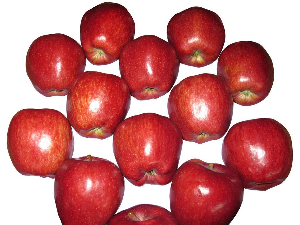 fresh red star apple, Chines apple