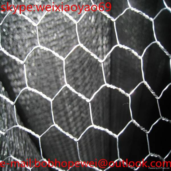 Building your dream 3/8 PVC coated hexagonal wire mesh