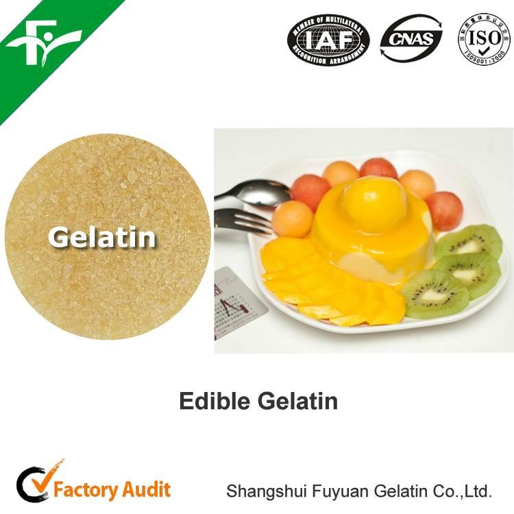 gelatin best price