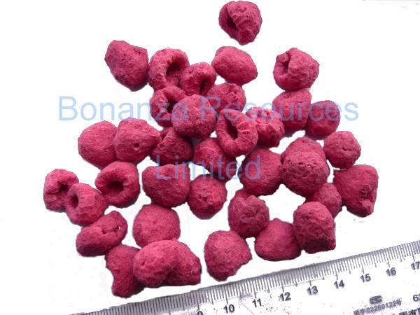 Sell Freeze Dried Raspberry