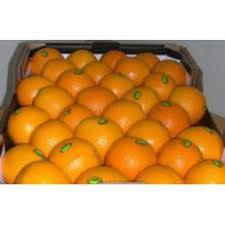 Fresh Oranges, Valencia and Navel Oranges