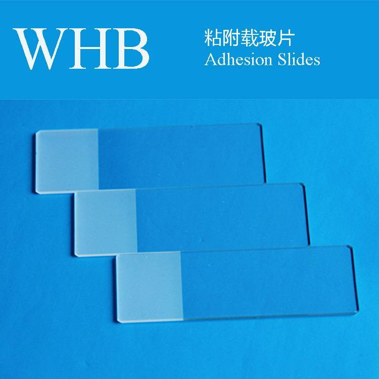 High Quality Whb Colorful Adhesion Slides