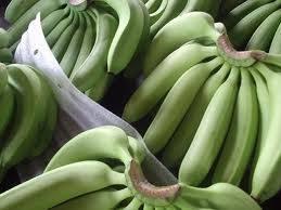 Tropicana Premium banana