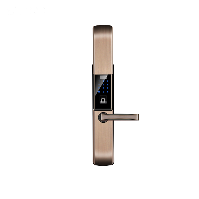 Luxury Multi-function Fingerprint Password Door Lock with Sliding Clousure