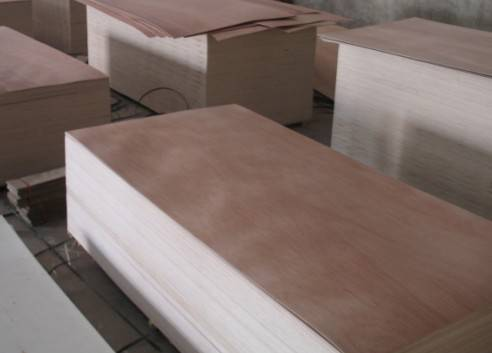 Sell okuman plywood
