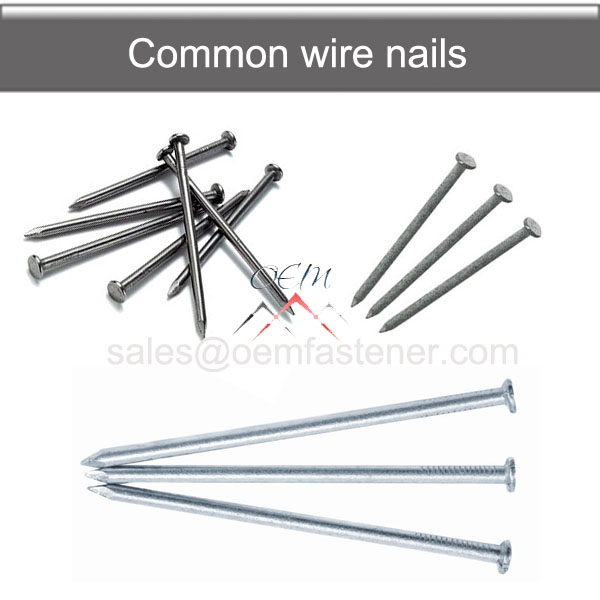 clout roofing nail
