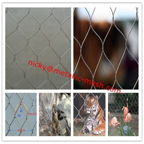 Weather-Consistant X-tend Wire Rope Net for Zoo Park