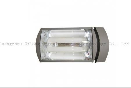Flood induction light for factory