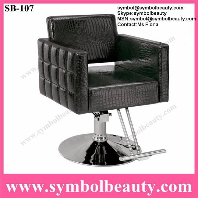 hair slaon chair
