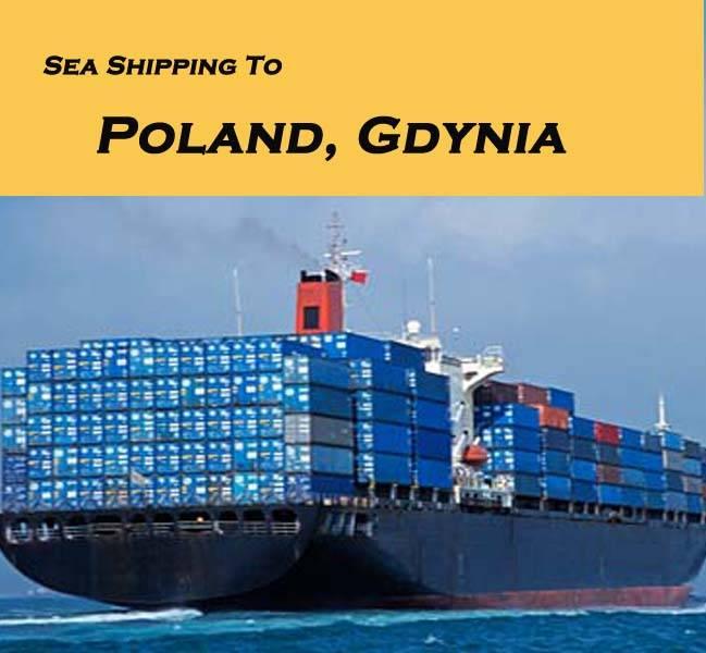 DDP DDU to netherland , Sea freight, Ocean freight forwarder